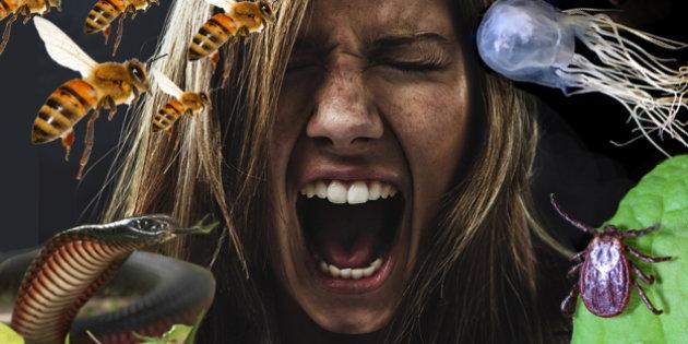 Gerçek sevgili için 25 Yaratıcı (ve Tehlikeli) Fotoğraf Fikirleri