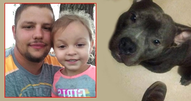 5 Gün Önce Aldıkları Pitbull, 3 Yaşındaki Kıza Saldırıp Öldürdü
