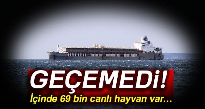 69 Bin Hayvan Yüklü Gemi Çanakkale Boğazı'nda Demirledi