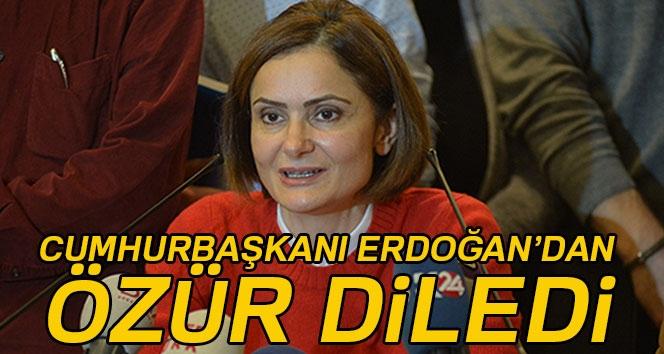 CHP İl Başkanı Kaftancıoğlu Cumhurbaşkanı Erdoğan'dan özür diledi