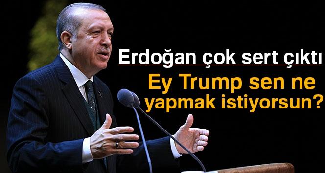 Erdoğan: 'Ey Trump Sen Ne Yapmak İstiyorsun?'