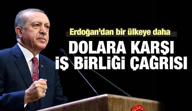 Erdoğan'dan bir ülkeye daha 'dolar' çağrısı