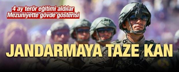 Jandarmaya Taze Kan!