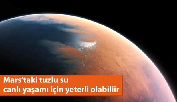 Mars'taki tuzlu su, basit yaşam formlarını destekleyebilir