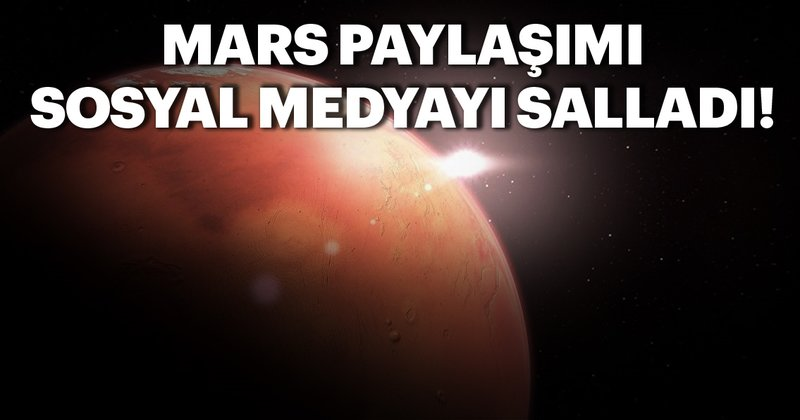 NASA'nın uzay aracı Insight Mars'tan ilk özçekimi gönderdi