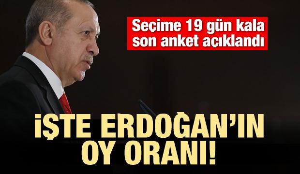 Seçime 19 kala son anket! İşte Erdoğan'ın oy oranı