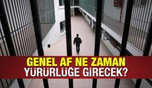 Genel af çıkıyor mu? İnfaz düzenlemesi, denetimli serbestlik ve şartlı ceza indirimi