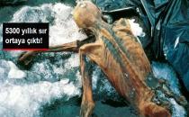 5300 Yıl Önce Yaşamış Buz Adam Ötzi Hakkında Gizemli Gerçek