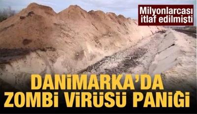 Danimarka'da Zombi Virüsü Paniği!