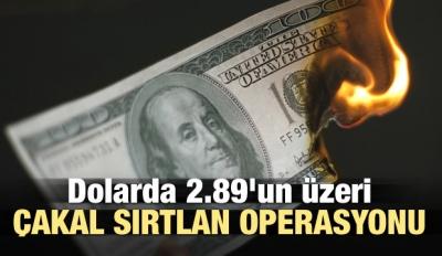 Dolarda 2.89'un üzeri çakal sırtlan operasyonu