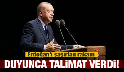 Erdoğan'ı şaşırtan rakam, duyunca talimat verdi