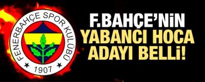 Fenerbahçe'nin yabancı hoca adayı belli!