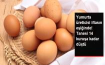 Fiyatı 14 Kuruşa Kadar Gerileyen Yumurta Üretimine Kota Talebi