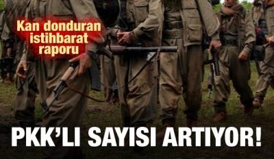 İstihbarat raporu: PKK'lı sayısı arttı!