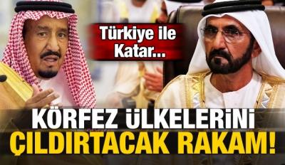 Körfez ülkelerini çıldırtacak rakam! Türkiye...