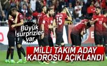 Milli Takım Aday Kadrosu Açıklandı!