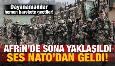 NATO'nun Zeytin dalı hazımsızlığı! Uyarı yaptılar