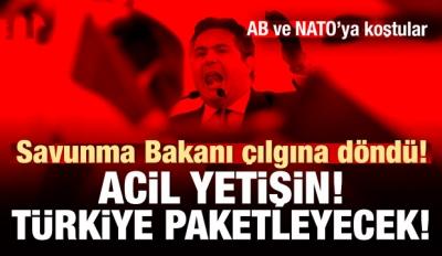 NATO'ya koştular: Yetişin! Türkiye paketleyecek!