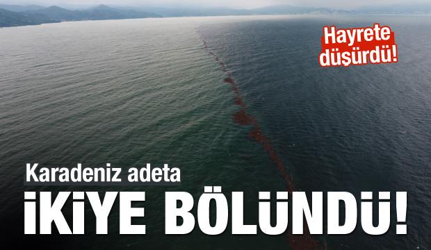 Karadeniz Adeta İkiye Bölündü!